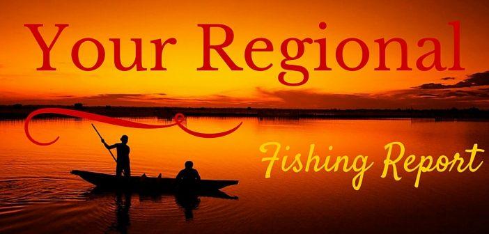 Your Regional Fishing Report