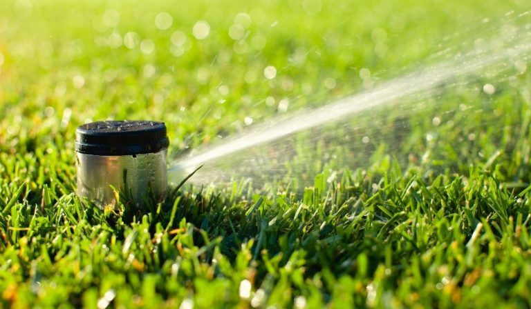 Give your Irrigation System an Audit